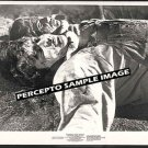 INCREDIBLE 2-HEADED TRANSPLANT ~ Orig &#39;71 CREATURE MOVIE PHOTO ~ AIP HORROR