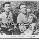 KING KONG ESCAPES ~ Orig '68 TOHO Studios Movie Photo ~ RHODES REASON / AKIRA TAKARADA