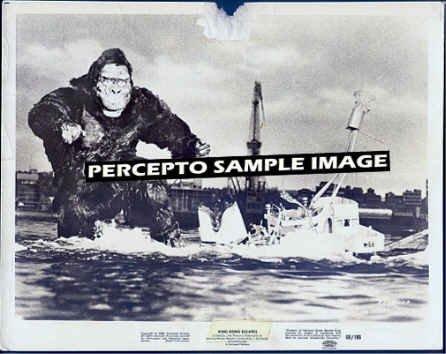 KING KONG ESCAPES ~ Orig '68 TOHO Movie Photo ~ KONG SHIPWRECK