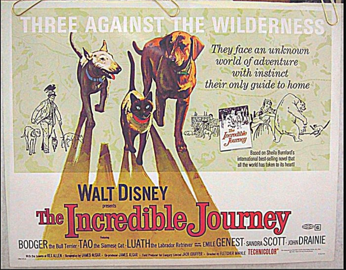 INCREDIBLE JOURNEY ~ Ex-Cond '74 Half-Sheet Movie Poster ~  WALT DISNEY Classic