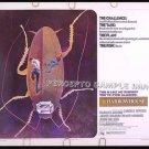 11 HARROWHOUSE ~ Original '74 Half Sheet CAPER Movie Poster ~ CANDICE BERGEN / CHARLES GRODIN