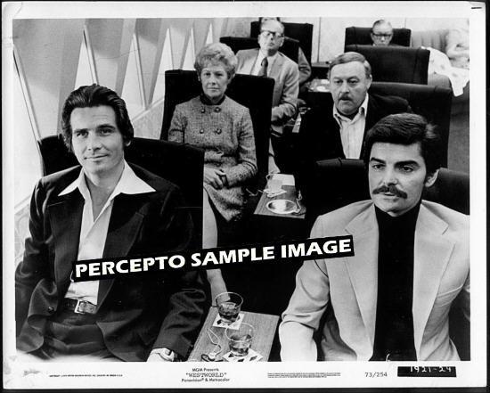 WESTWORLD ~ Orig '73 MICHAEL CRICHTON Sci-Fi Classic Movie Photo ~ JAMES BROLIN / RICHARD BENJAMIN