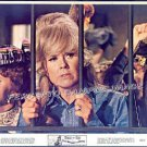 The BALLAD OF JOSIE ~ Original '68 Western Movie Photo ~ DORIS DAY in JAIL