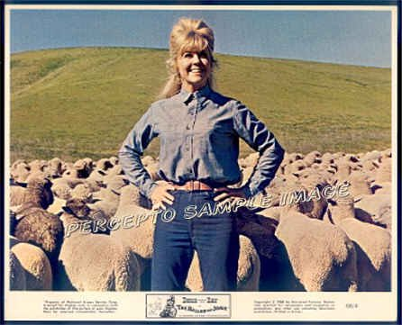 The BALLAD OF JOSIE ~ Original '68 Western Movie Photo ~ DORIS DAY and SHEEP