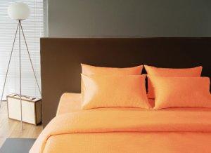Sleeping beauty (Orange fever)