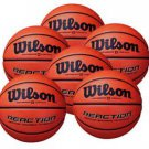 Leach Enterprises has Wilson's Basketballs for Sale Online
