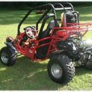Leach Enterprises has a Dune Buggy Go Kart for Sale Online