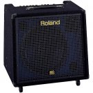 Leach Enterprises has a Roland Guitar Amplifer for Sale Online