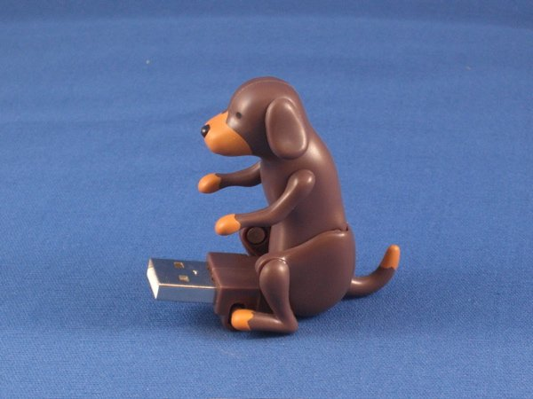 USB Humping Dog - Rottweiler