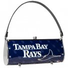 Tampa Bay Devil Rays Littlearth Fender License Plate Purse Bag Gift