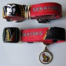 Ottawa Senators Pet Dog Leash Set Collar ID Tag Small