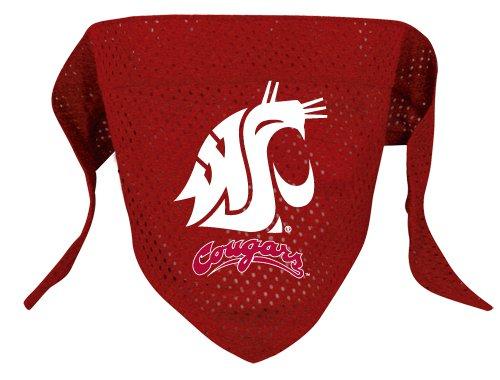 Washington State Cougars Pet Dog Football Jersey Bandana S/M