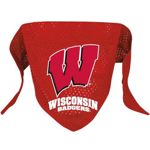 Wisconsin University Badgers Pet Dog Football Jersey Bandana S/M
