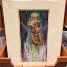 Disney Parks Tinker Bell Fairy Fantasy Deluxe Print by Darren Wilson NEW
