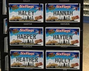 Six Flags Magic Mountain Name Magnet Haley Hannah Harper Hayden Heather Holly