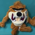 "Six Flags Magic Mountain Looney Tunes Tasmanian Devil 12"" Plush New"