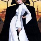 Disney WonderGround Star Wars Princess Leia & Darth Vader Postcard byLeilani Joy