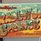 Disney Parks DCA Cars Land Greetings From Radiator Springs Metal Magnet New