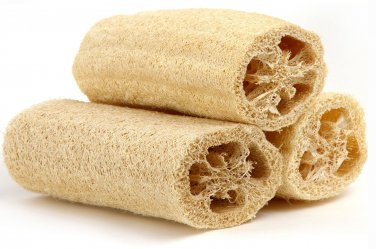 HEIRLOOM NON GMO Luffa Gourd/Sponge 15 seeds