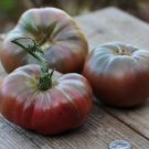HEIRLOOM NON GMO Vorlon Belgium Purple Tomato 25 seeds