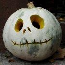 HEIRLOOM NON GMO Casper White Pumpkin 15 seeds