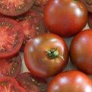 HEIRLOOM NON GMO Chesnut Chocolate Cherry Tomato 25 seeds