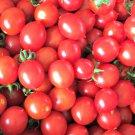 HEIRLOOM NON GMO Principe Borghese Tomato 25 seeds (RARE)