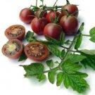 HEIRLOOM NON GMO Black Cherry Tomato 25 Seeds