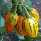 HEIRLOOM NON GMO Toga Striped Eggplant 20 seeds