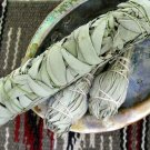 HEIRLOOM NON GMO  White Sage (smudging, not eating) 100 seeds