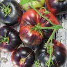 HEIRLOOM NON GMO Blue Beauty Tomato 25 seeds