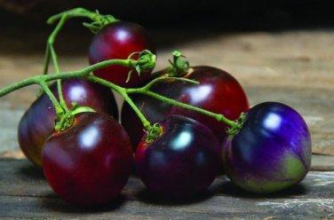HEIRLOOM NON GMO  Blue Berries Tomato 25 seeds