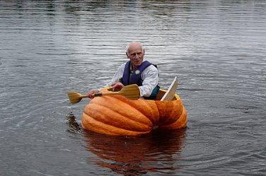 HEIRLOOM NON GMO Dill's Atlantic Giant Pumpkin 15 seeds