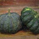 HEIRLOOM NON GMO Thai Kang Kob Pumpkin 15 seeds