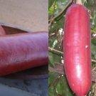HEIRLOOM NON GMO Cassabanana Melocoton15 seeds