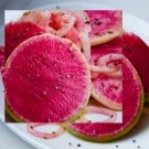 HEIRLOOM NON GMO Chinese Red Meat Radish 100 Seeds