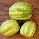 HEIRLOOM NON GMO White Emerald Cucumber 15 seeds