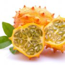 HEIRLOOM NON GMO Kiwano - African Horned Cucumber 15 seeds