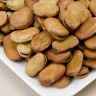 HEIRLOOM NON GMOMasterpiece Fava Bean 25 seeds