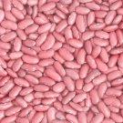 HEIRLOOM NON GMO Rajama Indian Pink Bean 25 seeds