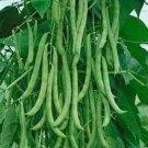 HEIRLOOM NON GMO Missouri Wonder Pole Bean  25 seeds