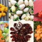 HEIRLOOM NON GMO Habanero Pepper Mix 25 seeds