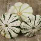 HEIRLOOM NON GMO Patisson Panache Jaune Et Vert Scallop Squash 15 seeds