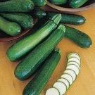 HEIRLOOM NON GMO Zucchini Black Beauty Squash 15 seeds