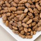 HEIRLOOM NON GMO Rattlesnake Pole Bean 25 seeds