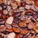 HEIRLOOM NON GMO Jackson Wonder Lima Bean 25 seeds