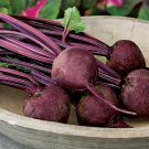 HEIRLOOM NON GMO Detroit Dark Beet 25 seeds