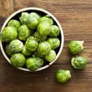 HEIRLOOM NON GMO Catskill Brussels Sprouts 100 seeds
