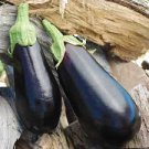 HEIRLOOM NON GMO Black beauty Eggplant 25 seeds