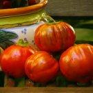 HEIRLOOM NON GMO Melanzane Rosso Di Rotonda 25 seeds